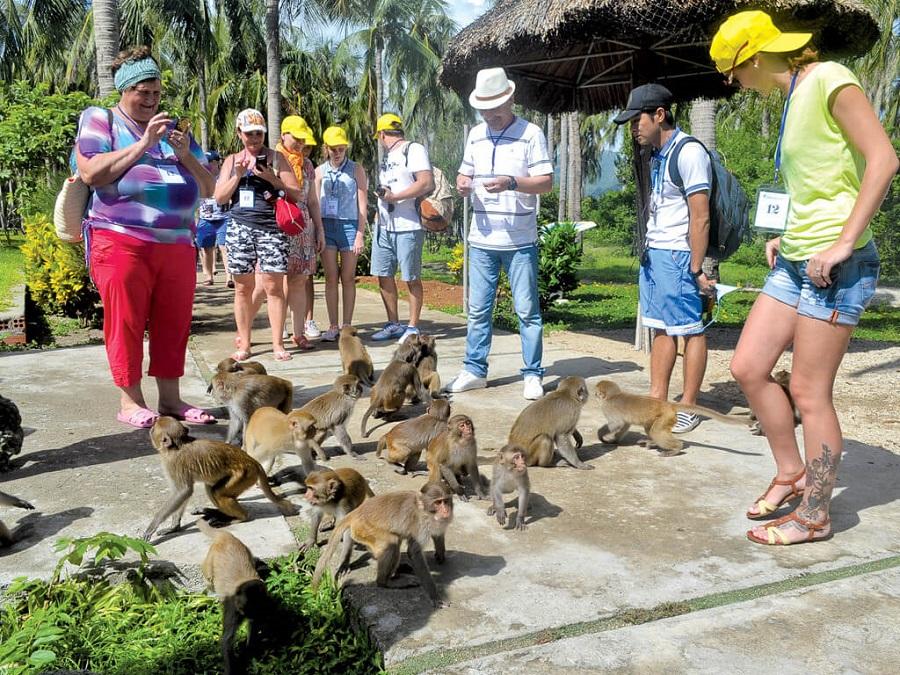 đảo khỉ tại tour du lich Nha Trang