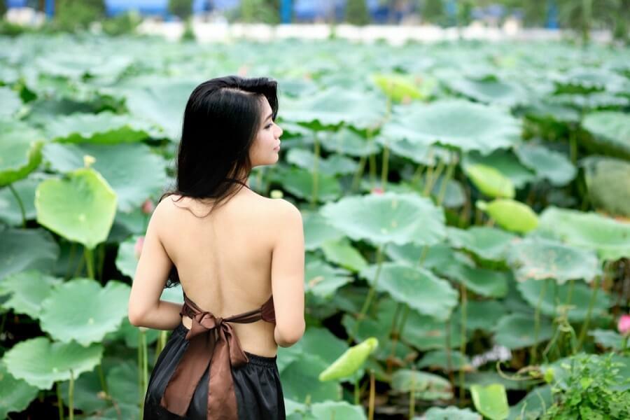 Đầm sen Hồ Tây điểm chụp ảnh đẹp Hà Nội
