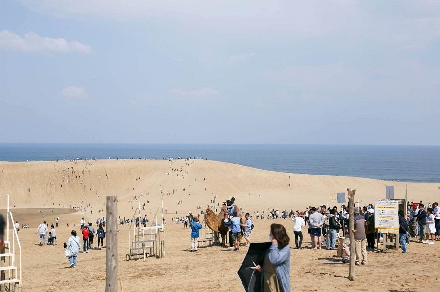 cảnh đẹp như sa mạc dù chỉ là một đồi cát tottori phải đến khi du lich nhật bản