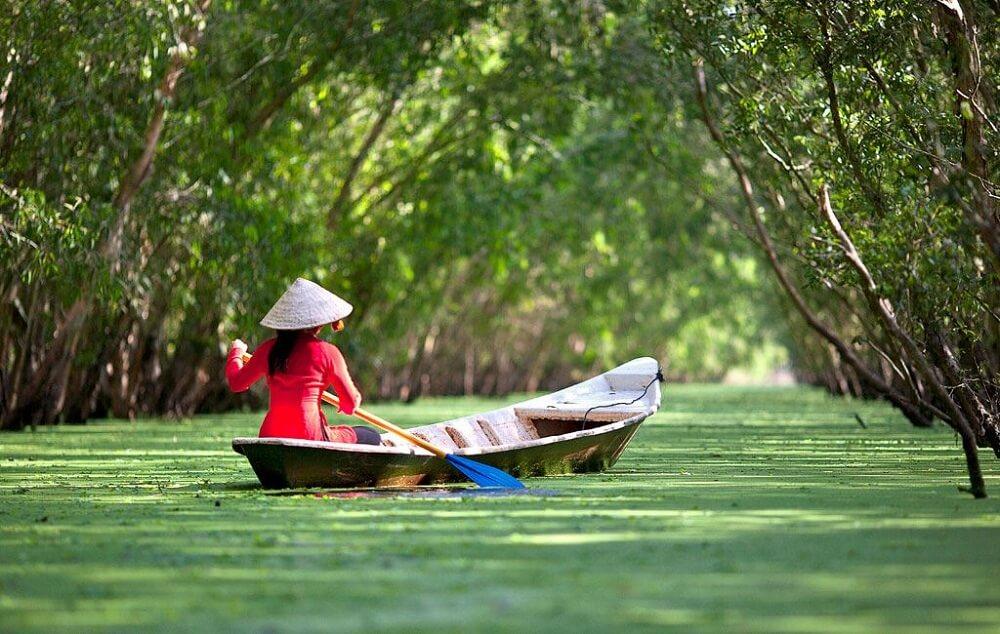 Cảnh đẹp đồng bằng sông cữu long
