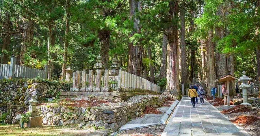 núi koya được xem là nơi tâm linh nhất Nhật Bản