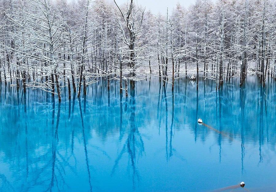 the blue pond tuyệt đẹp và là một trong những cảnh đẹp tuyệt nhất khi du lịch Nhật Bản