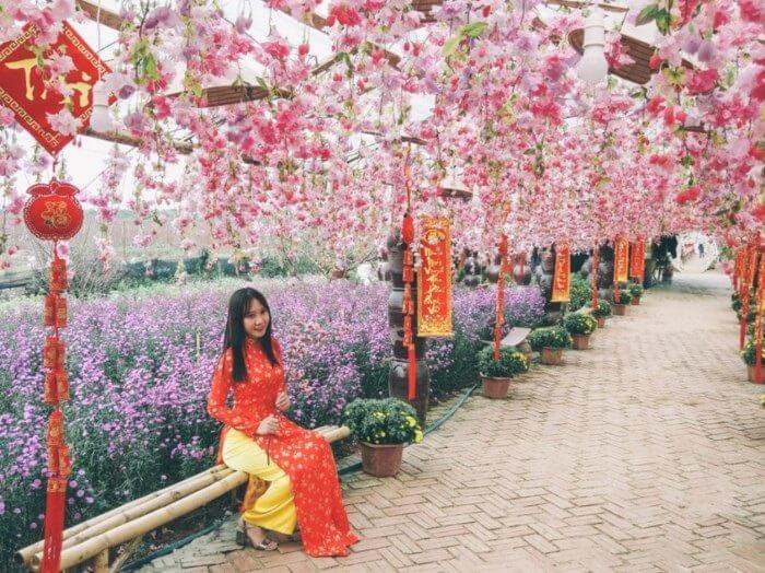 Vườn hoa Nhật Tân mỗi mùa xuân về