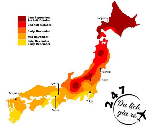 Bản đồ lá phong chuyển màu tại Nhật Bản Du Lịch Nhật Bản Mùa Nào Đẹp Nhất, Du Lịch Nhật Bản, Tour Du Lịch Nhật Bản, Du Lịch Nhật Bản Đi Đâu, Ẩm Thực Nhật Bản, Văn Hóa Nhật Bản
