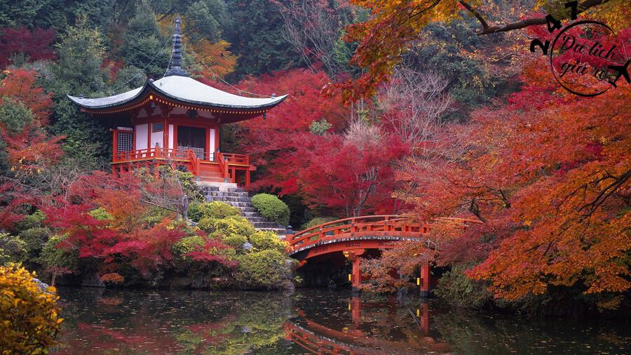 Mùa thu Nhật Bản Du Lịch Nhật Bản Mùa Nào Đẹp Nhất, Du Lịch Nhật Bản, Tour Du Lịch Nhật Bản, Du Lịch Nhật Bản Đi Đâu, Ẩm Thực Nhật Bản, Văn Hóa Nhật Bản