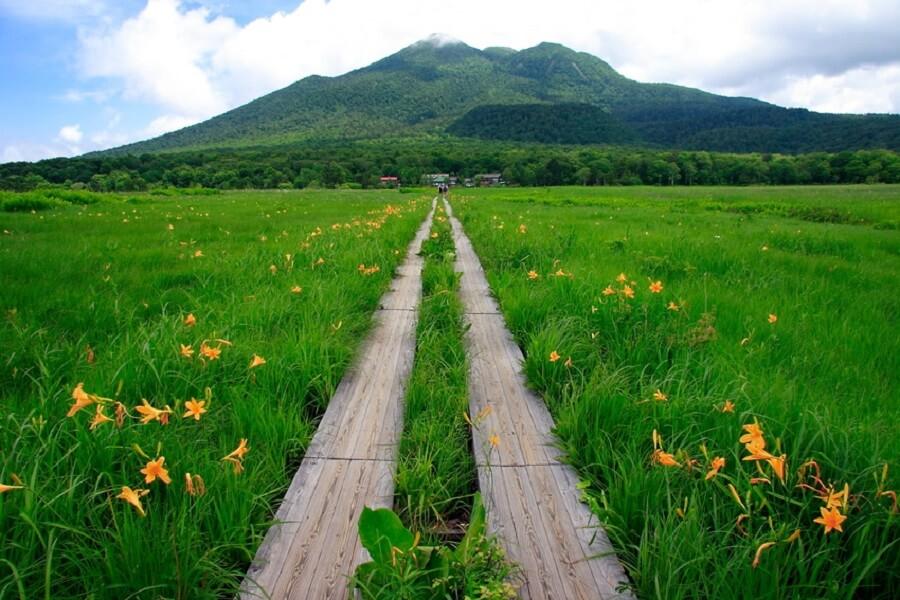 Thung lũng Oze tràn ngập cỏ hoa mùa xuân Du Lịch Nhật Bản Mùa Nào Đẹp Nhất, Du Lịch Nhật Bản, Tour Du Lịch Nhật Bản, Du Lịch Nhật Bản Đi Đâu, Ẩm Thực Nhật Bản, Văn Hóa Nhật Bản