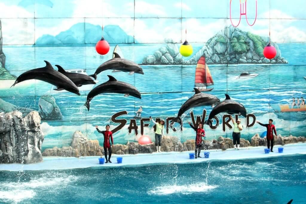 choi gi o Safari World Bangkok