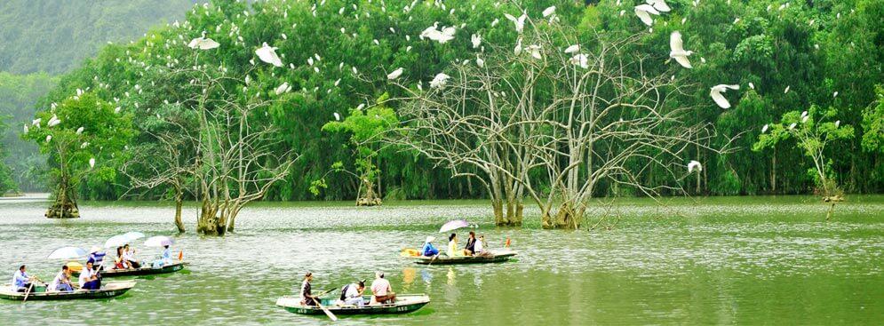 Vườn-Chim-Thung-Nham-tai-vuon-chim-thung-nham