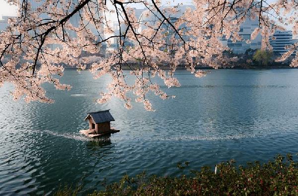 canh-dep-seoul