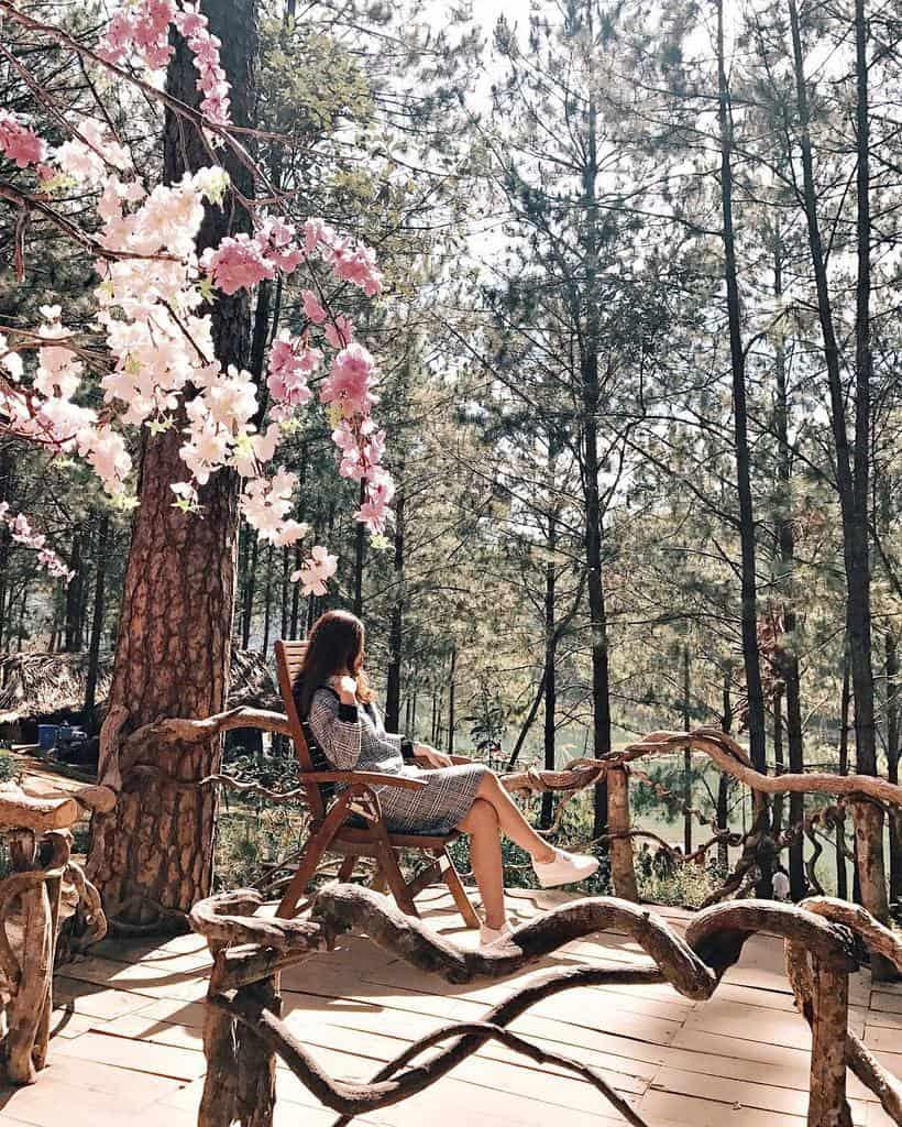 Secret Garden đã và đang là địa điểm chụp hình tại Đà Lạt được các bạn trẻ yêu thích nhất