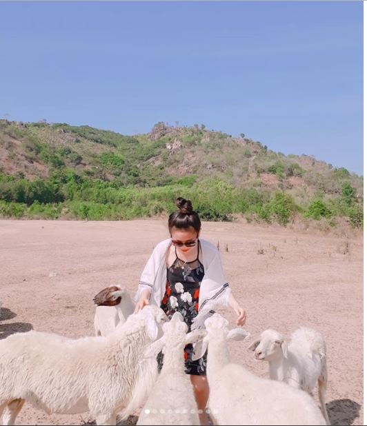 Không nên tự ý vào giữa đàn cừu chụp ảnh mà bạn nên nhờ những người chăn cừu trợ giúp